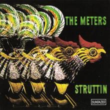 "METERS ""STRUTTIN"" CD"