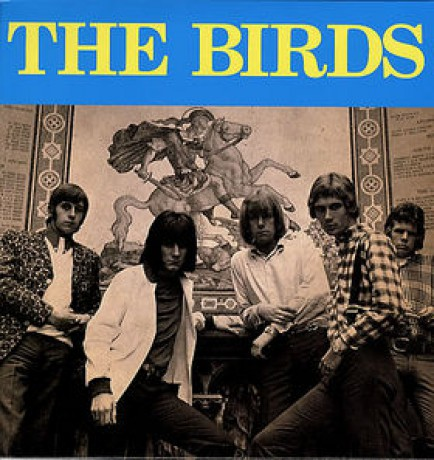 "BIRDS ""S/T"" LP"