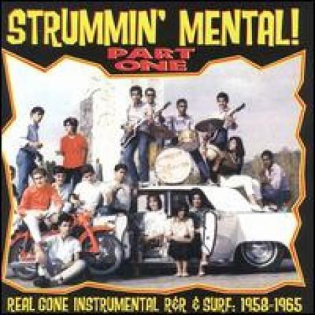 STRUMMIN' MENTAL PART 1 CD