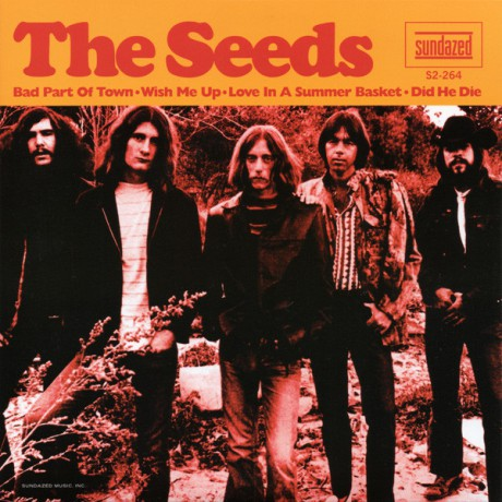 "SEEDS ""Bad Part of Town"" Double 7"""