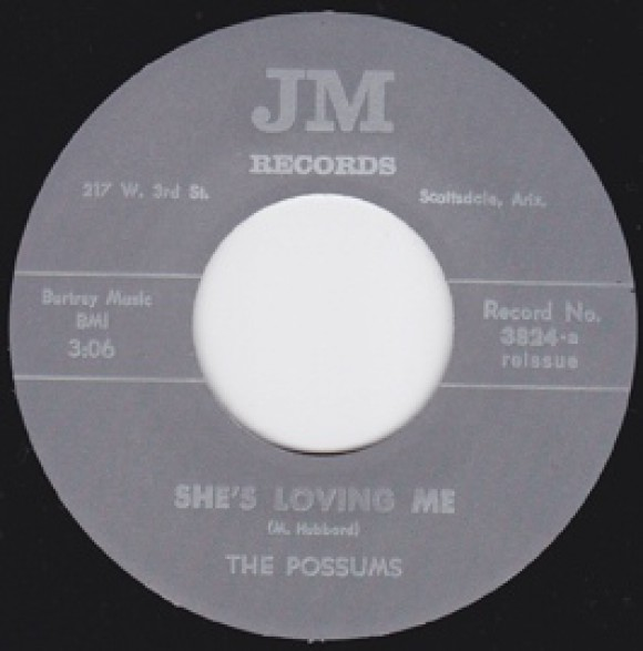 "POSSUMS ""SHE'S LOVING ME/KING IN HIS WORLD"" 7"""