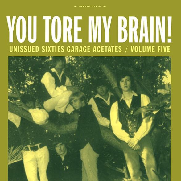 GARAGE ACETATES Volume 5: YOU TORE MY BRAIN LP