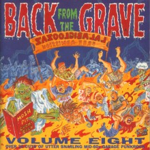 BACK FROM THE GRAVE Volume 8 Double LP