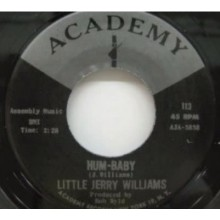 "LITTLE JERRY WILLIAMS ""HUM-BABY/SHE'S SO DIVINE"" 7"""