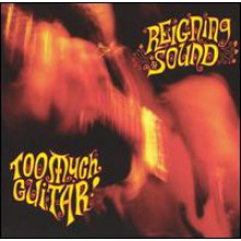 "REIGNING SOUND ""TOO MUCH GUITAR"" LP"