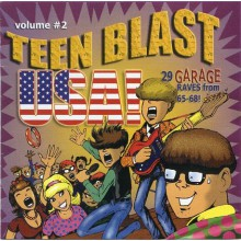 TEEN BLAST USA VOL 2 CD