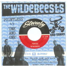 "WILDEBEESTS ""POINTLESS/ ONE AND ONE"" 7"""