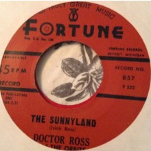 "DOCTOR ROSS ""CAT SQUIRREL/THE SUNNYLAND"" 7"""