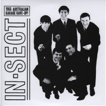 "IN-SECT ""I Can See My Love / Over Under Sideways Down"" 7"""
