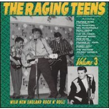 RAGING TEENS VOLUME 3 LP