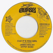 "JAMES WALSH GYPSY BAND ""Cuz It's You Girl / Bring Yourself Around"" 7"""