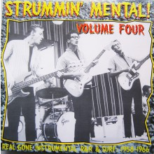 STRUMMIN' MENTAL VOLUME 4 LP