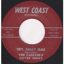 "Fabulous Silver Tones ‎""Hey, Sally Mae / Stranger In Paradise"" 7"""