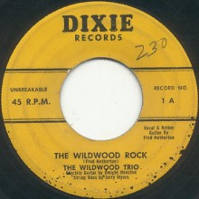 "WILDWOOD TRIO ""The Wildwood Rock / Dear What About You"" 7"""