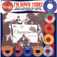 "TEENAGE SHUTDOWN ""I'M DOWN TODAY"" LP"