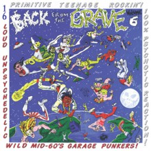 BACK FROM THE GRAVE Volume 6 LP