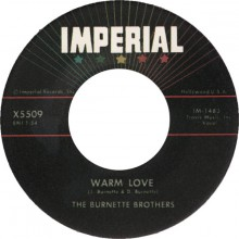 "Burnette Bothers ""Warm Love / My Honey"" 7"""