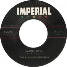 "Burnette Bothers ""Warm Love / My Honey"" 7"""
