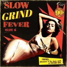 SLOW GRIND FEVER Volume 6 LP