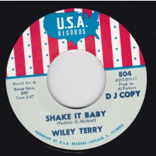"WILEY TERRY ""SHAKE IT BABY"" / MISS ANN LITTLES ""I WILL BE GOT DOG"" 7"""