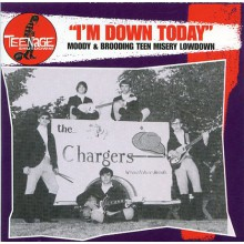 "TEENAGE SHUTDOWN ""I'M DOWN TODAY"" cd"