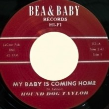 "HOUND DOG TAYLOR ""Take Five/My Baby Is Coming Home"" 7"""