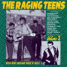 RAGING TEENS VOL 3 CD