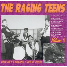 RAGING TEENS Volume 4 CD