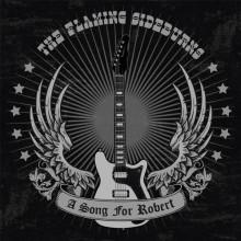 "FLAMING SIDEBURNS ""A Song For Robert"" 7"" - grey vinyl"