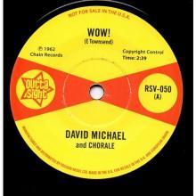 "DAVID MICHAEL ""Wow!"" / HANK LEVINE ""Image (Part 1)"" 7"""
