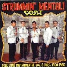 STRUMMIN' MENTAL Part 2 CD